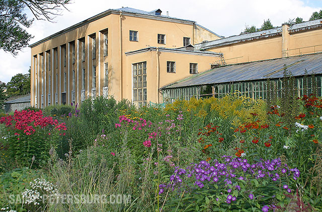 On The Grounds Of St Petersburg Botanical Gardens