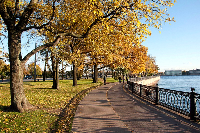 Kronverkskaya Embankment with autumn foliage in Saint-Petersburg, Russia