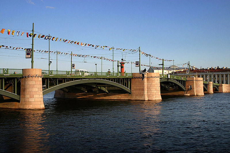 Baltic seagull and Birzhevoy Bridge with festive decorations in Saint-Petersburg, Russia