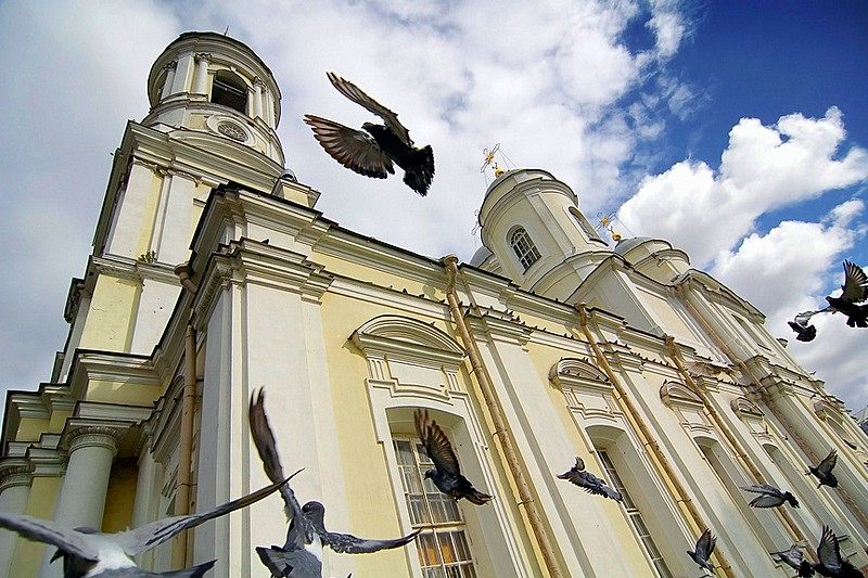 Pigeons in front of the Cathedral of Prince Vladimir (Knyaz-Vladimirskiy) in St Petersburg, Russia