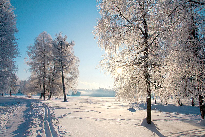 Winter view of Gatchina Park in Gatchina, south of St. Petersburg, Russia