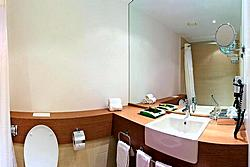 Bathroom of the Standard Room at the Holiday Inn Moskovskye Vorota Hotel in St. Petersburg