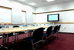 Troitsky Or Vladimirsky Conference Room at the Ibis St. Petersburg Centre Hotel in St. Petersburg