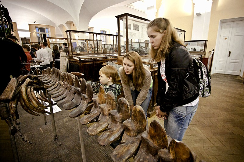 Exhibits at the Mining Research Museum in St Petersburg, Russia