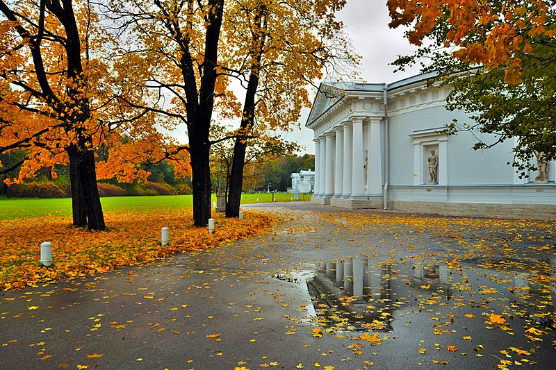 Autumn view of the park on Yelagin Island in St Petersburg, Russia
